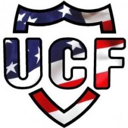 UCF Logo Sticker - 4x4